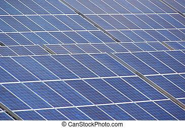 planta, solar, 40