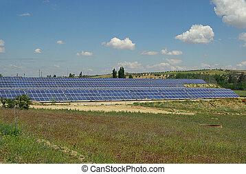 planta, solar, 41