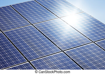 planta, solar