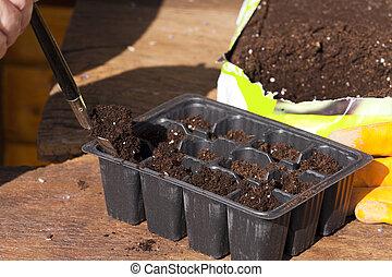 planta, solo potting, plástico, pequeno, bandejas