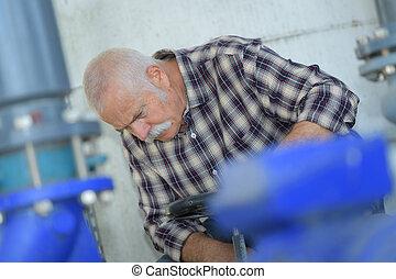 planta, trabajador industrial, fabricación