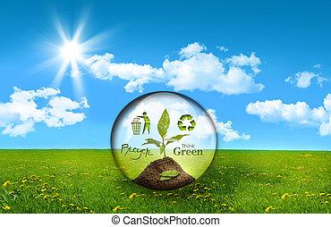 planta, vidrio, esfera, campo, césped alto
