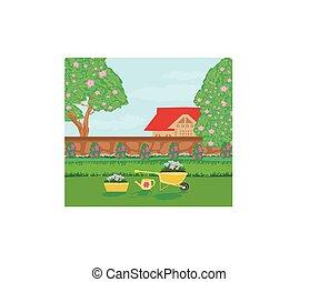 plantación, jardín, flores