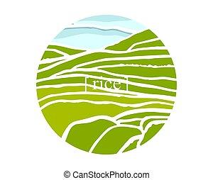 plantage, auf, kaskaden, field., reis, titel