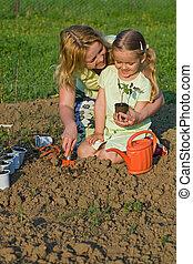 plantar, pequeno, mulher, junto, seedlings, menina
