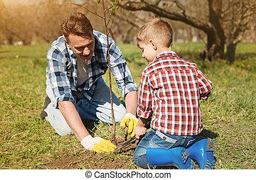 plantar, seu, pai, árvore, filho, alegre