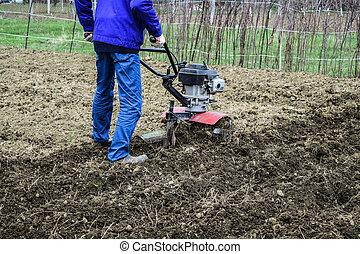 plantar, walk-behind, trator, sob, batatas