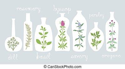 plantas aromáticas, em, garrafas