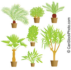 plantas, casa, vector, plano de fondo