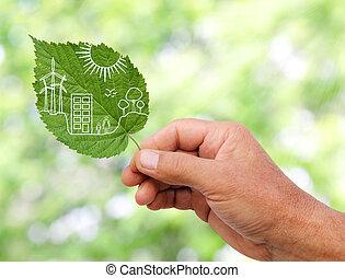 plantas, ciudad, corte, concepto, hojas, mano, verde,...
