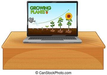 plantas, computadora, encendido, pantalla