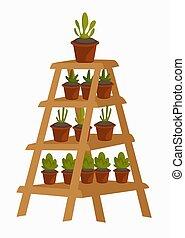 plantas, decoración, de madera, olla, floral, estante, interior