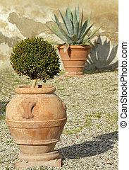 plantas, em, elegante, cerâmico, plantadores, ligado, cascalho, ruela