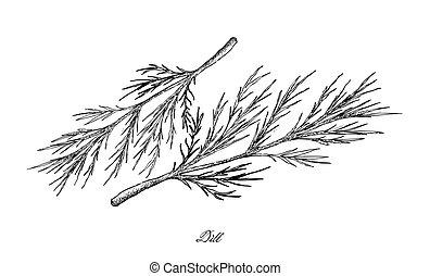 plantas, endro, mão, fundo, desenhado, branca