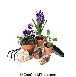 plantas, ferramentas, jardinagem, essenciais