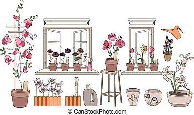 plantas, flor, vegetables., potes, ervas, janela, crescendo, sills, sacada