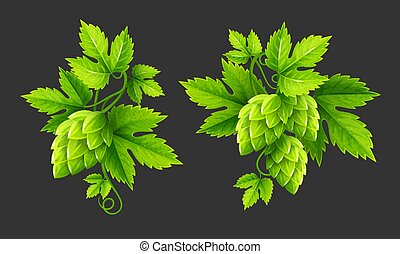 plantas, folhas, vetorial, verde, pulo, fresco