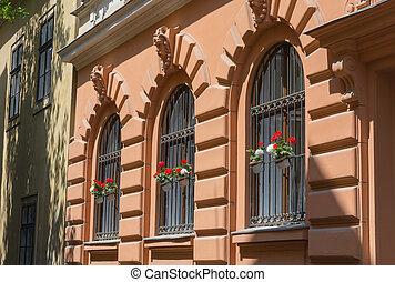 plantas, germanium, janela, ferro, ornate, te, forjado,...