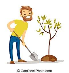 plantas, jovem, árvore., caucasian branco, jardineiro