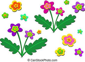 plantas, mezcla, solo, florecimiento