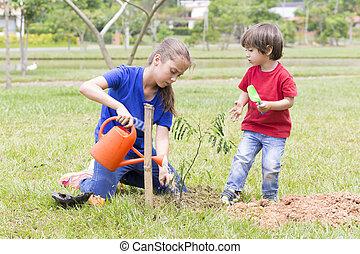 plantas, niño, regar, aire libre, niña, feliz