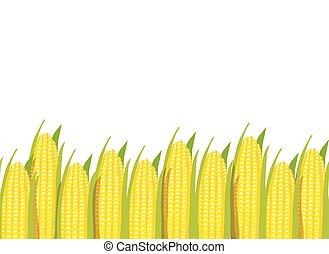 plantas, padrão, milho, seamless, fundo, horizontais, borda
