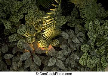 plantas, palma, groundcover, oración
