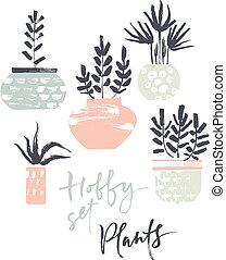 plantas, pasatiempo, set., ollas