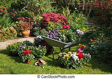 plantas, plantar, jardim, novo, preparar