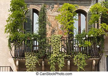 plantas, plaza, verona, casa, frescos, erbe, histórico, ...