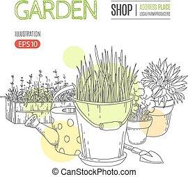 plantas, potted, modelo