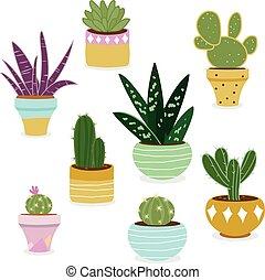 plantas, suculento, vector, ilustración, pots., cacto