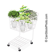plantas, verde, carro de compras, árboles