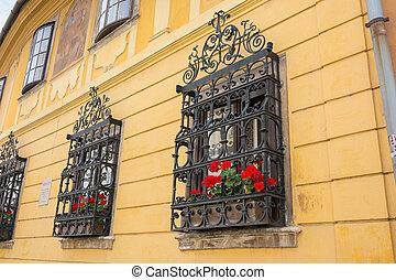plantas, ye, germanium, janela, ferro, ornate, forjado,...