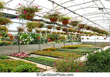 Plantation house with colorful flowers in Cyprus.