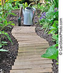 plantation in vegetable garden
