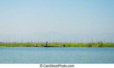 Plantations on water Inle Lake. Myanmar