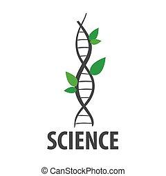 plante, adn, formulaire, feuilles, vecteur, logo