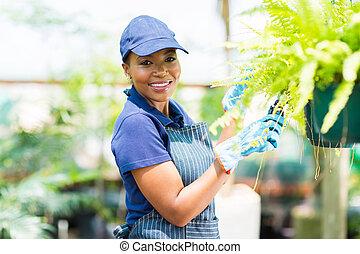 plante, américain, jardinier, africain femelle, taille