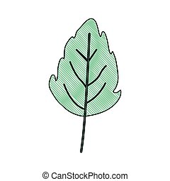 plante, blad, lobed, farve, lys grønnes, farvekridt, lille, ...