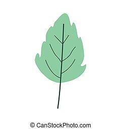 plante, blad, lobed, farve, lys grønnes, lille