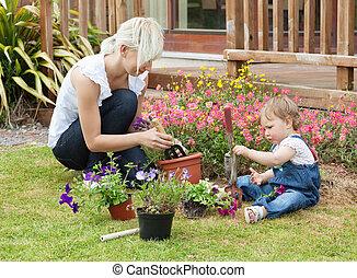 plante, coloré, famille, fleurs