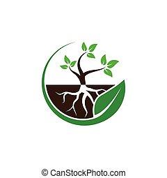 plante, concept, feuille, vecteur, conception, logo, cercle, racine