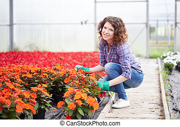 plante, dame, jeune, fonctionnement, infirmière