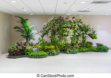 plante, dans, bâtiment bureau, .