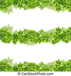 plante, ensemble, feuille, frontière, feuilles, feuillage vert, bannière, cadre