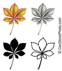 plante, ensemble, feuille