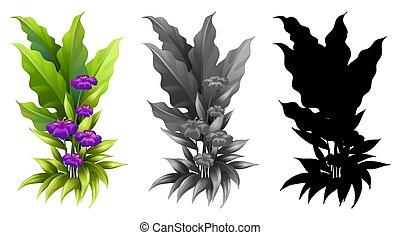 plante, ensemble, fleur