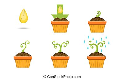 plante, ensemble, pot, illustration, vecteur, croissance, croissant, étapes, graine
