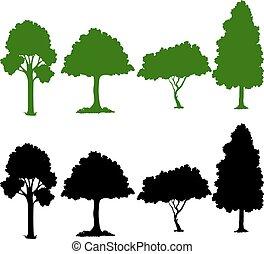 plante, ensemble, silhouette